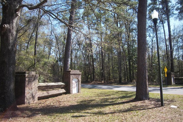 0  Wintergreen Road, Walterboro, SC - USA (photo 2)