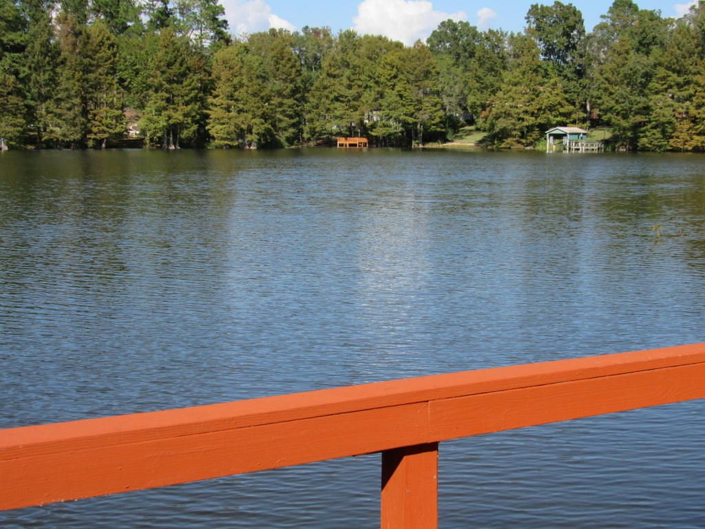120  Broad River , Santee, SC - USA (photo 4)