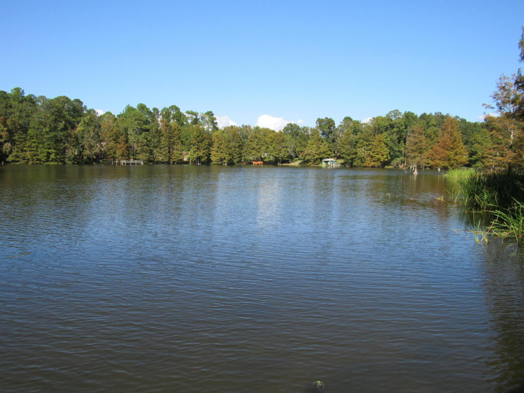 120  Broad River , Santee, SC - USA (photo 5)