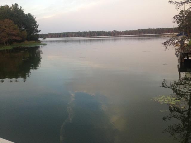 407  Lake Moultrie Drive, Bonneau, SC - USA (photo 1)