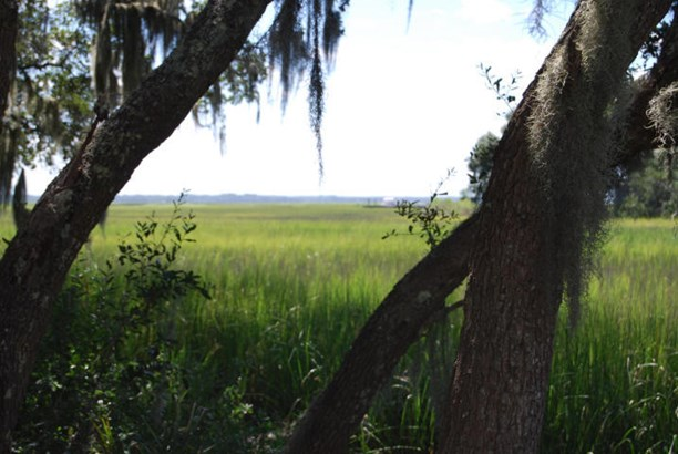 2361 S Rockland Avenue, Wadmalaw Island, SC - USA (photo 1)