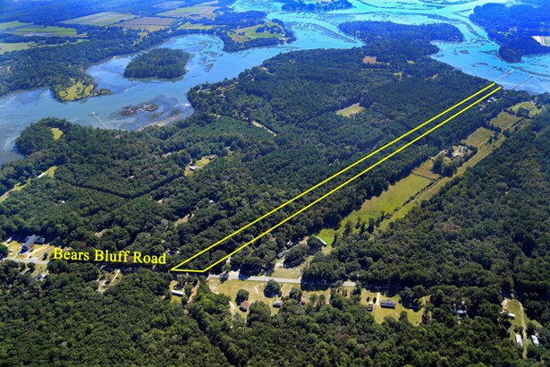 6229  Bears Bluff Road, Wadmalaw Island, SC - USA (photo 4)
