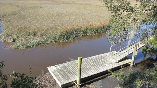 29  Bailey Island Lane, Edisto Island, SC - USA (photo 3)
