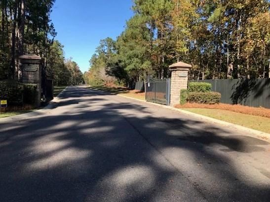 164  Ryefield Lane, Ridgeville, SC - USA (photo 3)