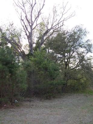 0  Omega Lane, Pineville, SC - USA (photo 1)