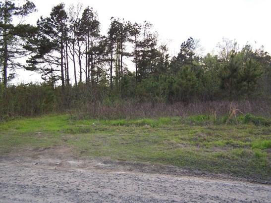 0  Omega Lane, Pineville, SC - USA (photo 2)