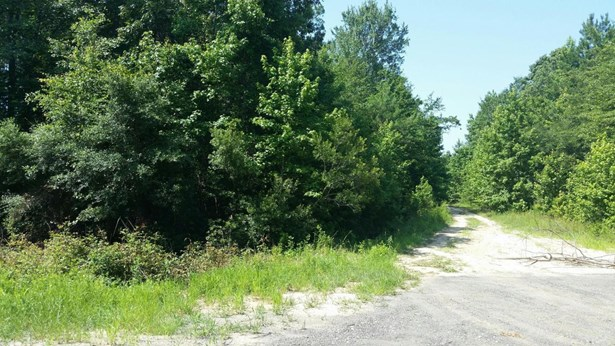 0  Geechie Club Lane, Cottageville, SC - USA (photo 3)