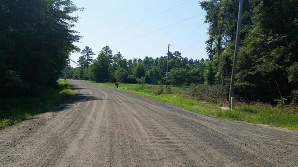 0  Geechie Club Lane, Cottageville, SC - USA (photo 4)
