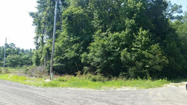 0  Geechie Club Lane, Cottageville, SC - USA (photo 5)
