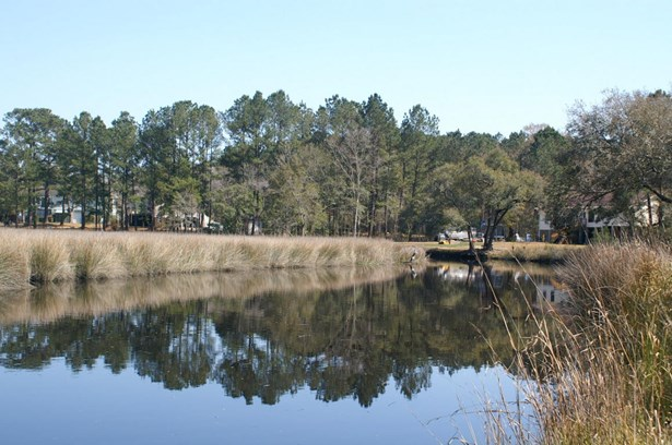8679  Doar Road, Awendaw, SC - USA (photo 3)