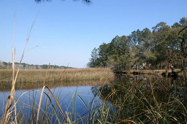 8679  Doar Road, Awendaw, SC - USA (photo 4)