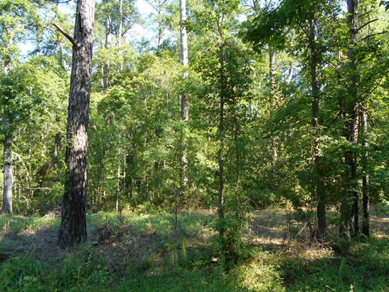 0  Old Georgetown Road, Mcclellanville, SC - USA (photo 1)