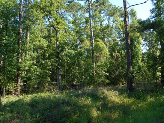 0  Old Georgetown Road, Mcclellanville, SC - USA (photo 4)