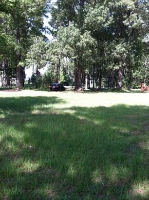 0  Rosewood Lane, Elloree, SC - USA (photo 2)