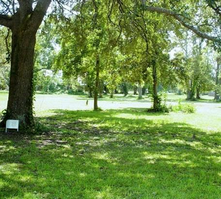 121  Broughton Hall Road, Pinopolis, SC - USA (photo 5)