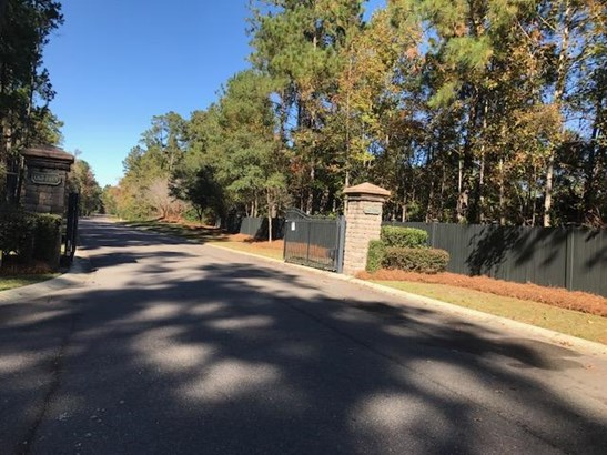 184  Ryefield Lane, Ridgeville, SC - USA (photo 2)