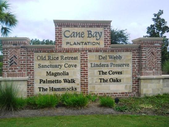 387  Sanctuary Park Drive, Summerville, SC - USA (photo 3)