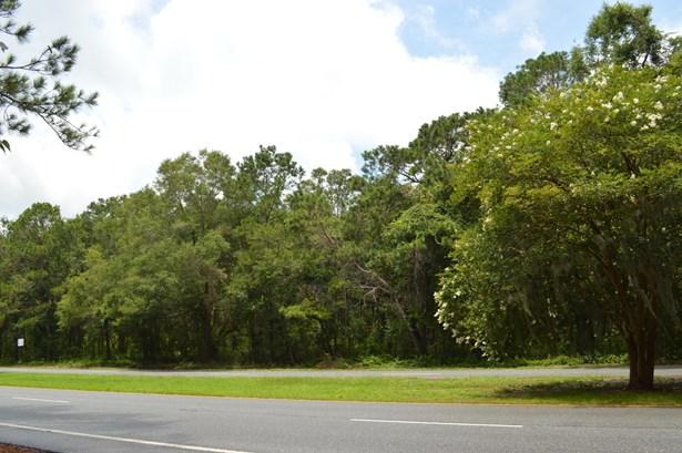 4346  Betsy Kerrison , Johns Island, SC - USA (photo 1)