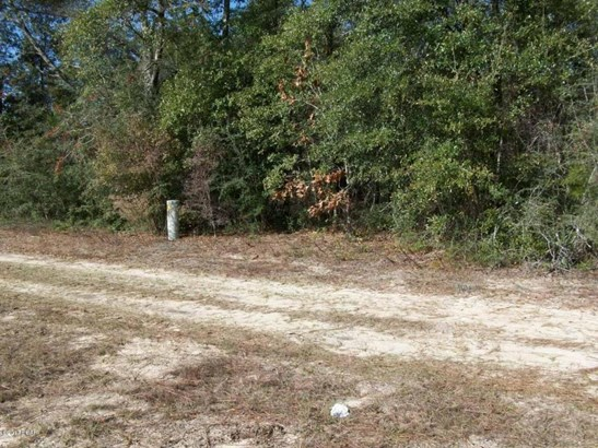 Residential Lots - Defuniak Springs, FL (photo 3)