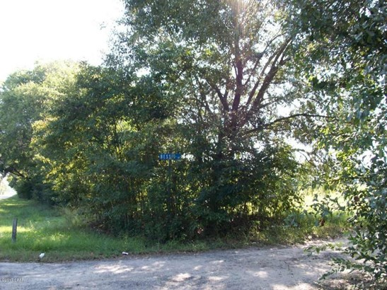 Land/Acres - Malone, FL (photo 2)