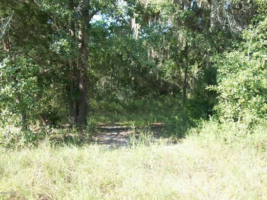 Land/Acres - Malone, FL (photo 3)