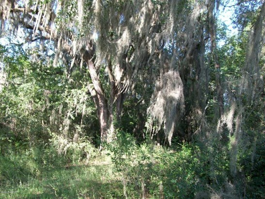 Land/Acres - Malone, FL (photo 4)