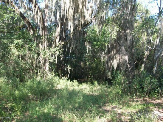 Land/Acres - Malone, FL (photo 5)