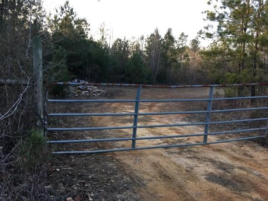 Land/Acres - Chipley, FL (photo 4)