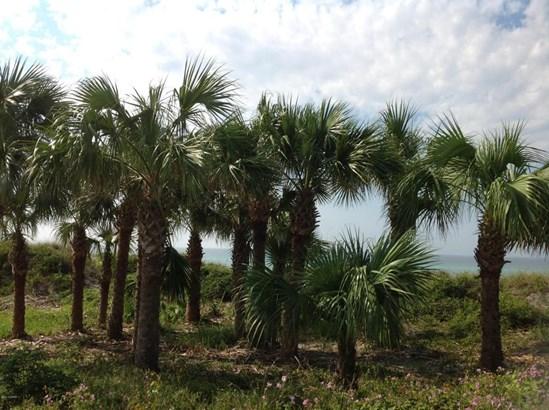 Triplex Multi-Units - Panama City Beach, FL (photo 3)