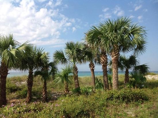 Triplex Multi-Units - Panama City Beach, FL (photo 4)