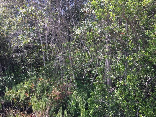 Vacant Land - Youngstown, FL (photo 4)