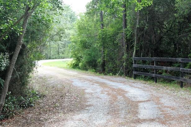 Detached Single Family, Ranch - Panama City, FL (photo 3)