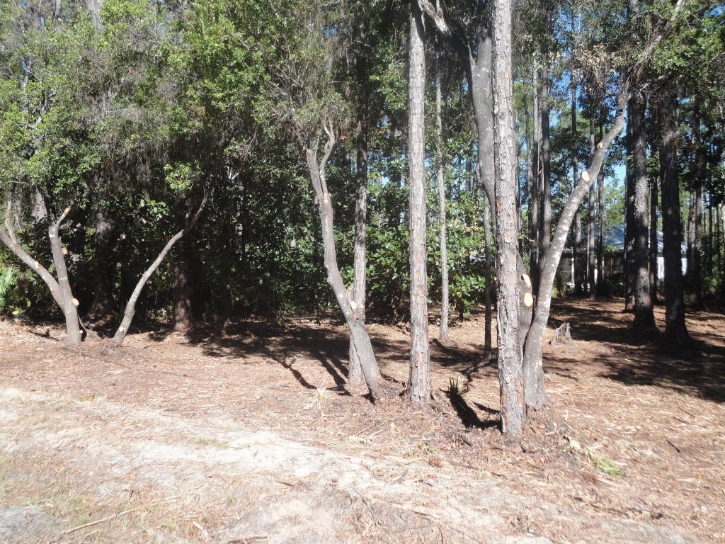 Residential Lots - Point Washington, FL (photo 2)