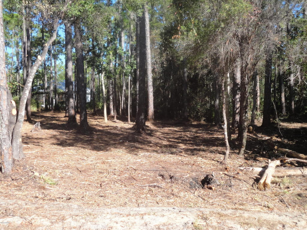Residential Lots - Point Washington, FL (photo 3)