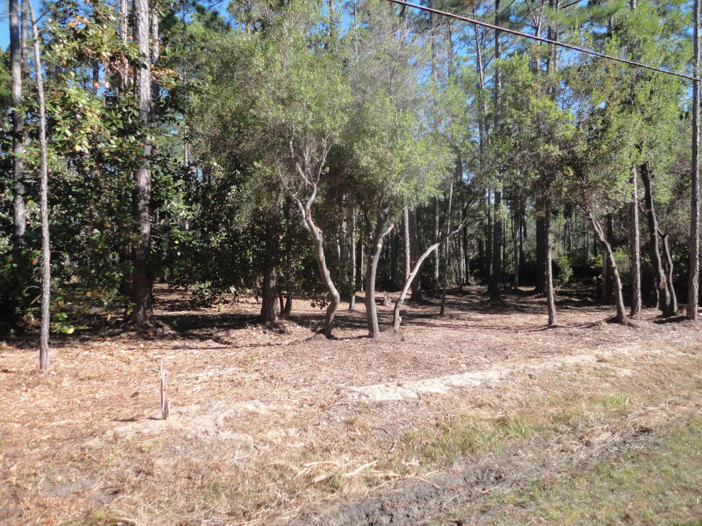 Residential Lots - Point Washington, FL (photo 5)