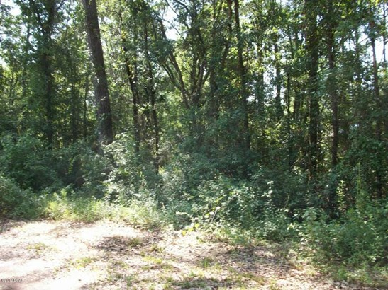 Residential Lots - Vernon, FL (photo 3)