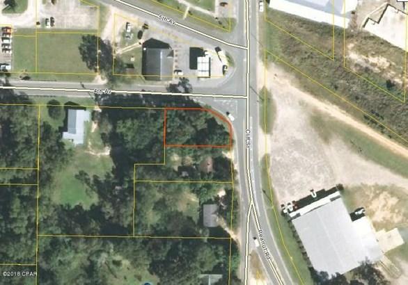 Residential Lots - Graceville, FL (photo 2)