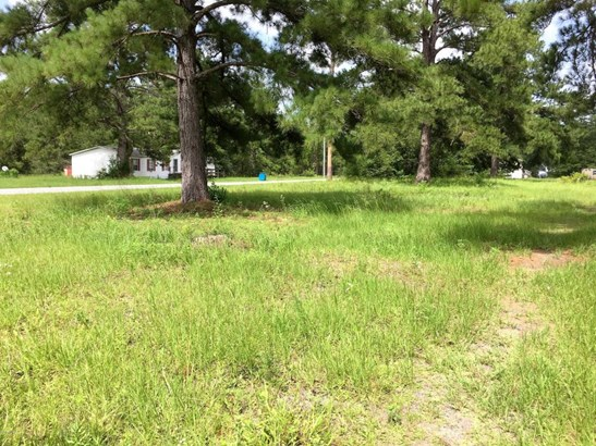 Residential Lots - Wewahitchka, FL (photo 3)