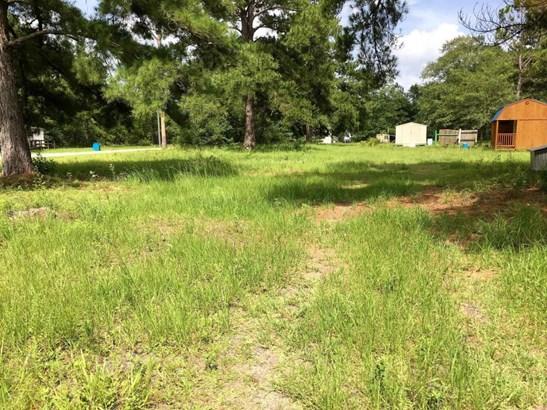 Residential Lots - Wewahitchka, FL (photo 4)
