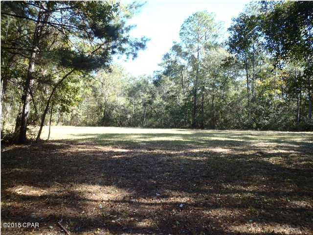 Land/Acres - Caryville, FL