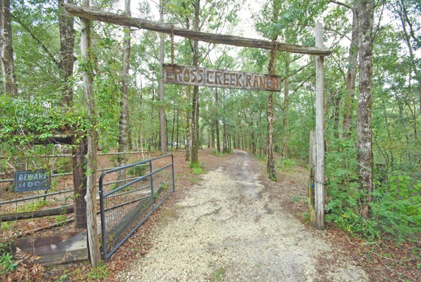 Detached Single Family, Country - Southport, FL (photo 2)