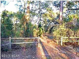 Residential Lots - Chipley, FL (photo 1)