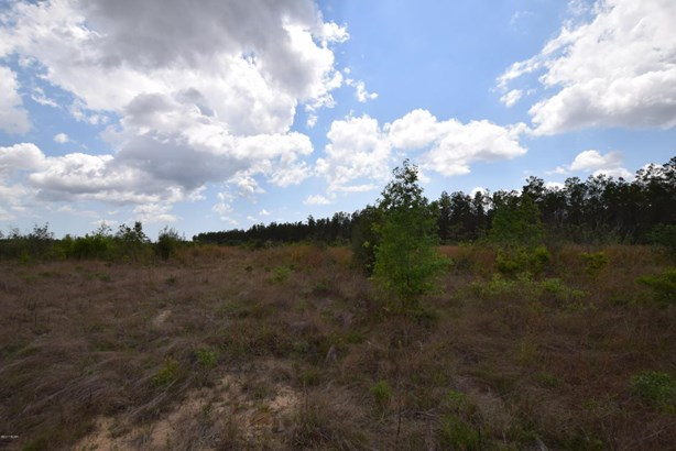 Vacant Land - Chipley, FL (photo 5)