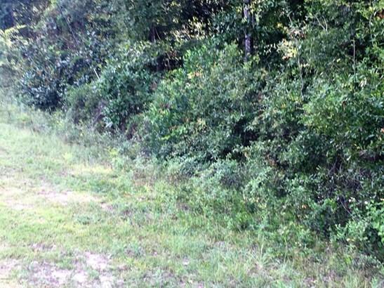 Land/Acres - Quincy, FL (photo 1)