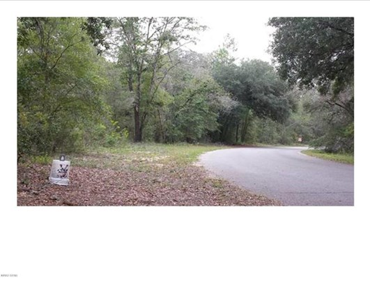 Residential Lots - Chipley, FL (photo 3)