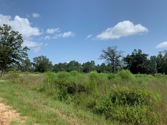 Vacant Land - Southport, FL