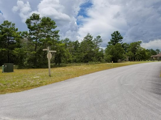 Residential Lots - Freeport, FL (photo 4)