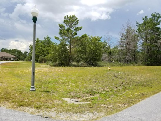 Residential Lots - Freeport, FL (photo 5)