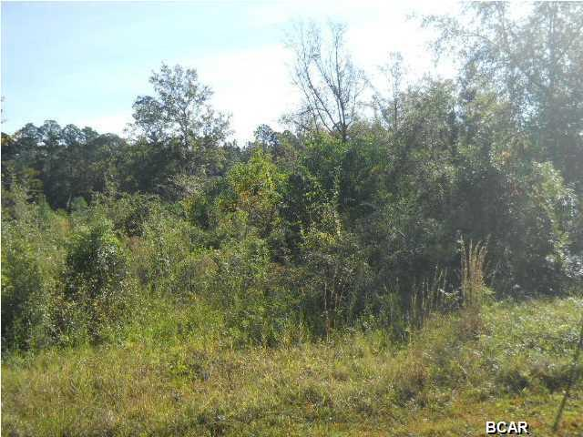 Residential Lots - Callaway, FL (photo 2)