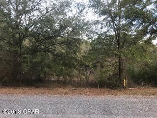 Residential Lots - Youngstown, FL